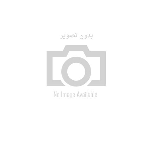 RealLine EBV quantitative (Str-format), CE - IVD